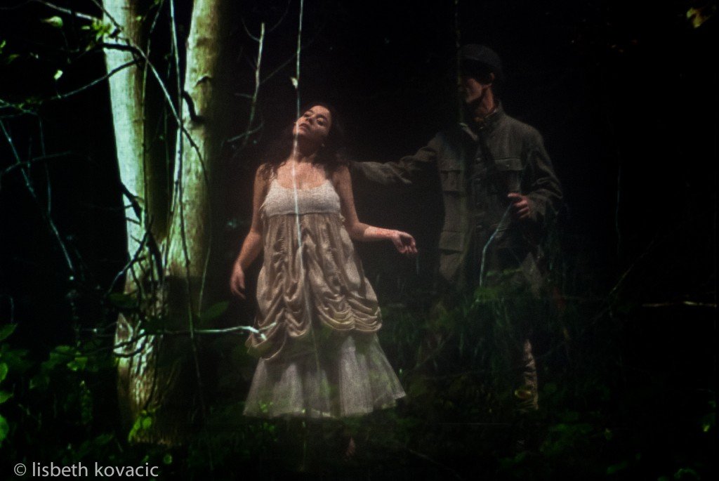 who shot the princess